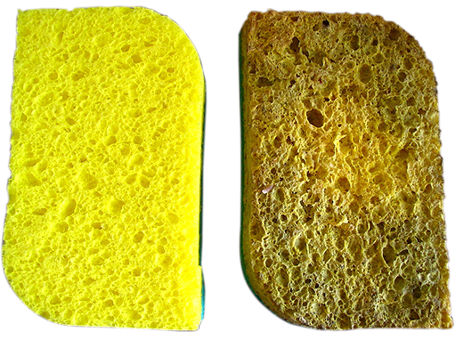Before and After of kitchen sponges